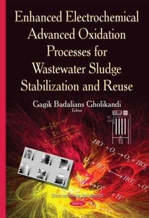 Enhanced Electrochemical Advanced Oxidation Processes for Wastewater Sludge Stabilization and Reuse imagine