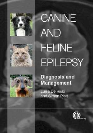 Canine and Feline Epilepsy