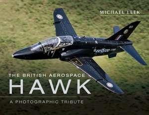 The British Aerospace Hawk de Michael Leek