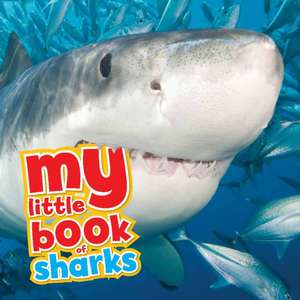 My Little Book of... Sharks