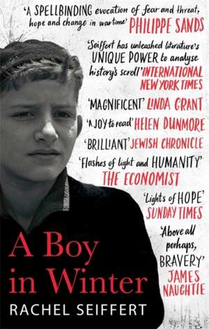 A Boy in Winter de Rachel Seiffert