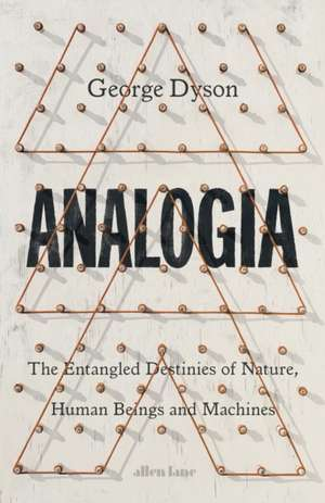 Analogia imagine