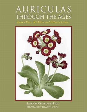 Auriculas Through the Ages: Bear's Ears, Ricklers and Painted Ladies imagine