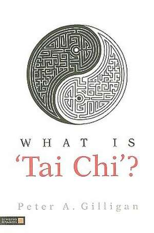 What Is 'Tai Chi'? de Peter A. Gilligan