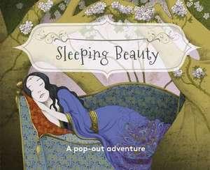 Pocket Fairytales: Sleeping Beauty de Paul Hess