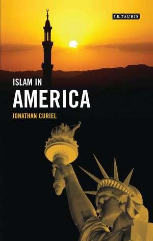 Islam in America imagine