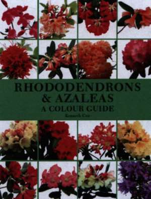 Rhododendrons & Azaleas