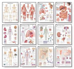Body Systems Chart Set de Scientific Publishing
