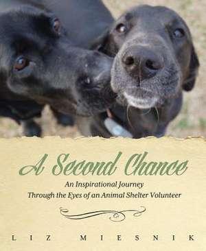 A Second Chance de Liz Miesnik
