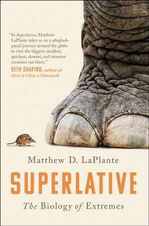 Superlative de Matthew D. LaPlante
