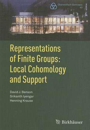Representations of Finite Groups: Local Cohomology and Support de David J. Benson