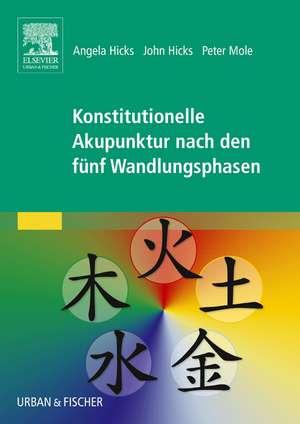 Konstitutionelle Akupunktur nach den fuenf Wandlungsphasen