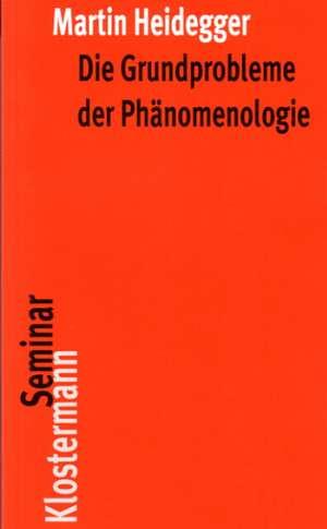 Die Grundprobleme Der Phanomenologie