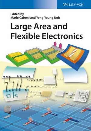 Large Area and Flexible Electronics de Mario Caironi