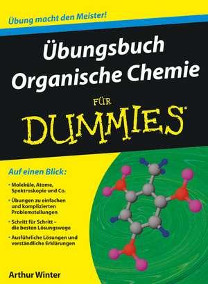 Übungsbuch Organische Chemie für Dummies de Arthur Winter