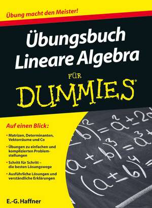Übungsbuch Lineare Algebra für Dummies de Ernst Georg Haffner