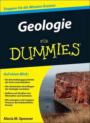 Geologie fuer Dummies