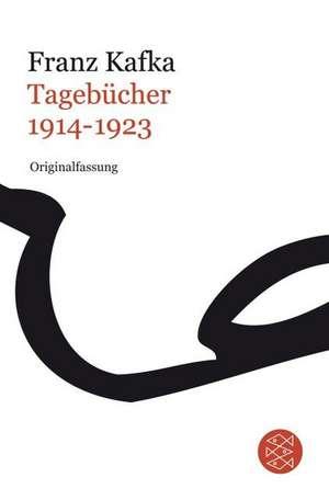 Tagebücher Bd.3 1914-1923 de Franz Kafka