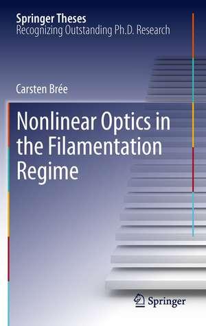 Nonlinear Optics in the Filamentation Regime de Carsten Brée