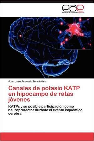 Canales de Potasio Katp En Hipocampo de Ratas Jovenes