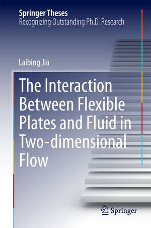 The Interaction Between Flexible Plates and Fluid in Two-dimensional Flow de Laibing Jia