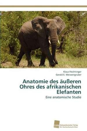 Anatomie Des Ausseren Ohres Des Afrikanischen Elefanten