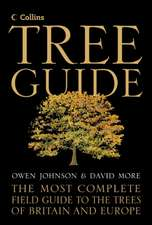 More, D: Collins Tree Guide