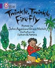 Twinkle, Twinkle, Firefly