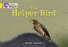 Helper Bird