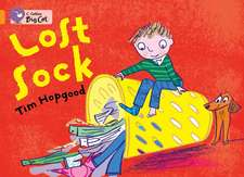The Lost Sock:  The Lost City