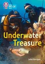 Collins Big Cat - Undersea Treasure: Band 13/Topaz