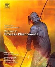 Treatise on Process Metallurgy, Volume 2: Process Phenomena