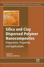 Silica and Clay Dispersed Polymer Nanocomposites