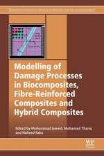 Modelling of Damage Processes in Biocomposites, Fibre-Reinforced Composites and Hybrid Composites