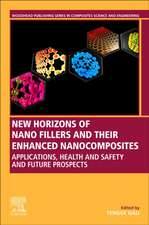 New Horizons of Nano Fillers and Their Enhanced Nanocomposites: Applications, Health and Safety and Future Prospects