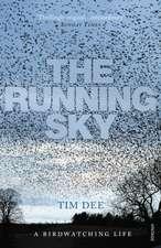 The Running Sky