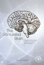 The Stimulated Brain