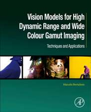 Vision Models for High Dynamic Range and Wide Colour Gamut Imaging