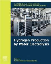 Electrochemical Power Sources: Fundamentals, Systems, and Applications