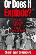 'Or Does It Explode?': Black Harlem in the Great Depression