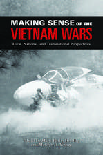 Making Sense of the Vietnam Wars: Local, National, and Transnational Perspectives