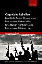 Organizing Rebellion: Non-State Armed Groups under International Humanitarian Law, Human Rights Law, and International Criminal Law