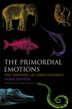 The Primordial Emotions: The dawning of consciousness