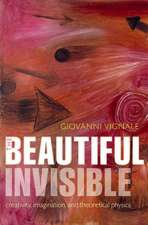 The Beautiful Invisible: Creativity, imagination, and theoretical physics