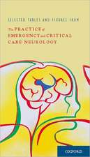 The Practice of Emergency and Critical Care Neurology:  The Oath of Plataea and the End of the Graeco-Persian Wars