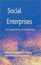 Social Enterprises: An Organizational Perspective