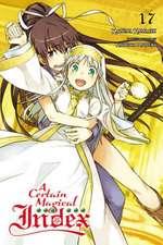 Certain Magical Index, Vol. 17 (light novel)