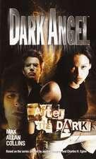 After the Dark:  A Novel of Suspense