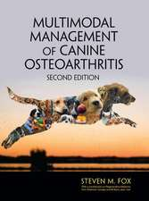 MULTIMODAL MANAGEMENT OF CANINE OST