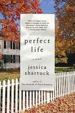 Perfect Life – A Novel